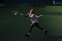 The top-seeded Williams imposed her will upon the Dane, hitting 29 winners to Wozniacki's four.